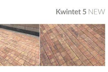 Тротуарная плитка бетонная Kwintet 5 1