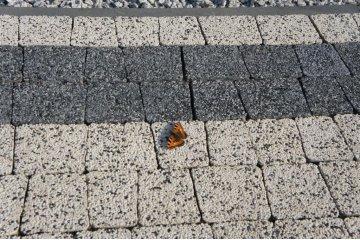 Польская тротуарная плитка Идеал Аквалайн Нефрит, Superbet 35