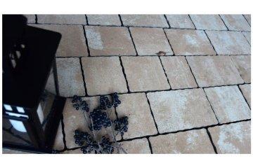 Польская тротуарная плитка Идеал Феерия Колор Атена, Superbet 27